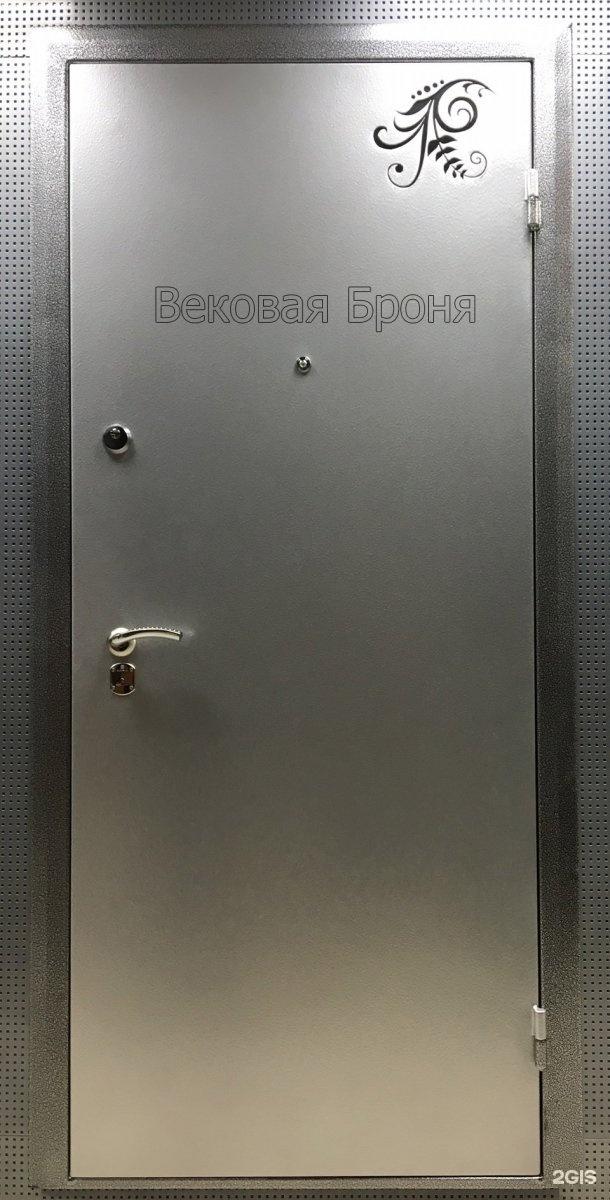 железная тамбурная дверь под заказ