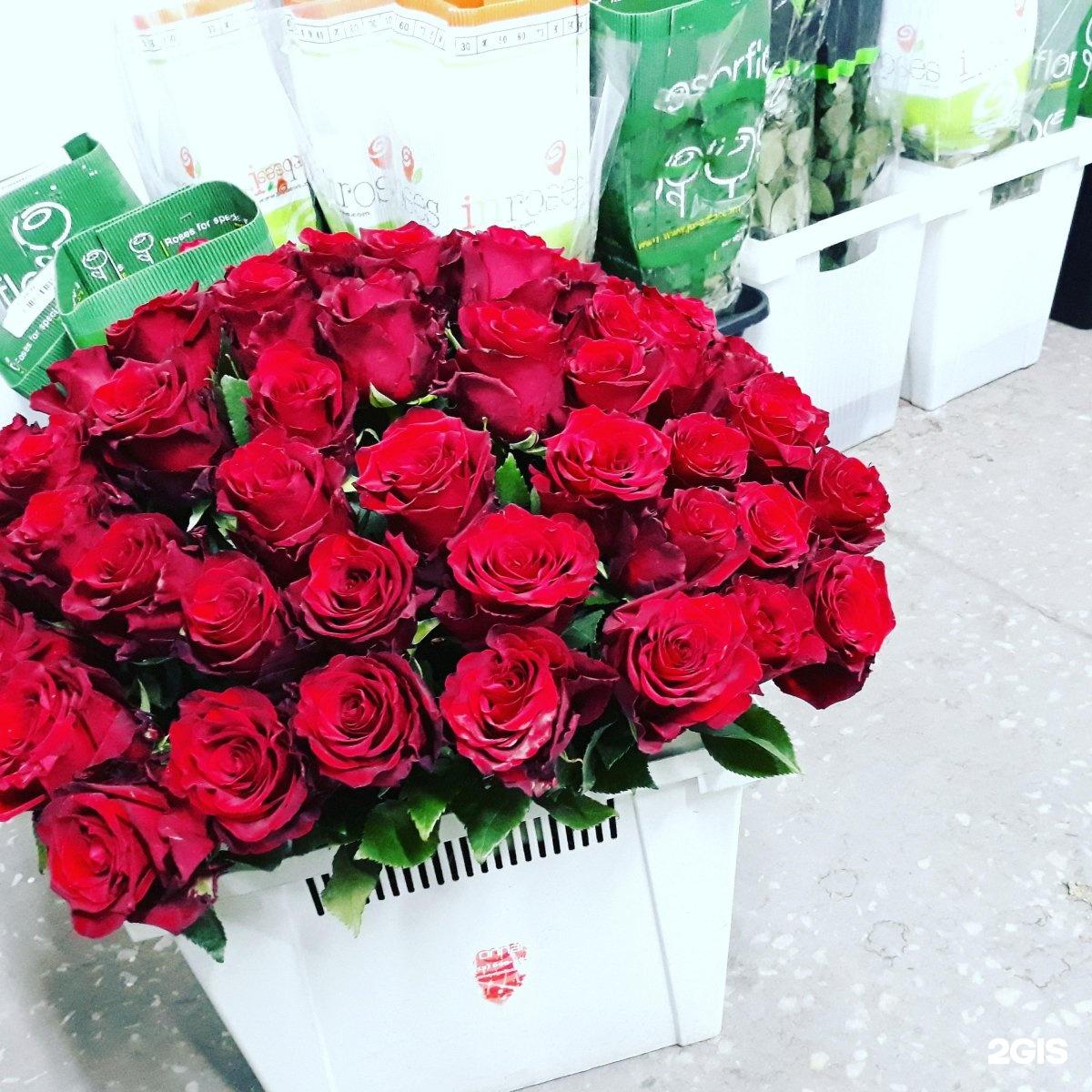 Доставка цветов г курган париж, букет