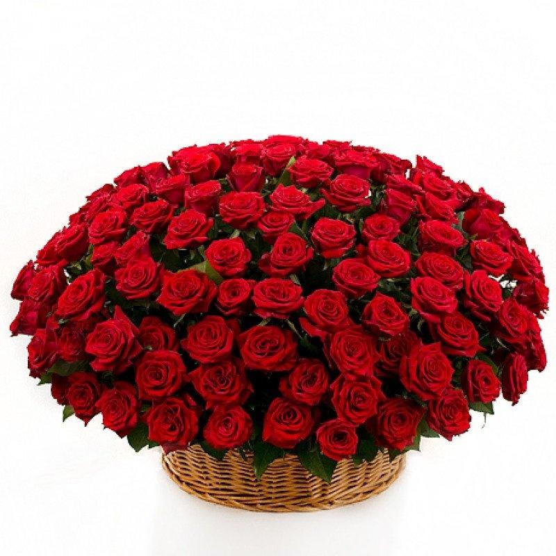Цветы, самые красивые букеты для девушки фото