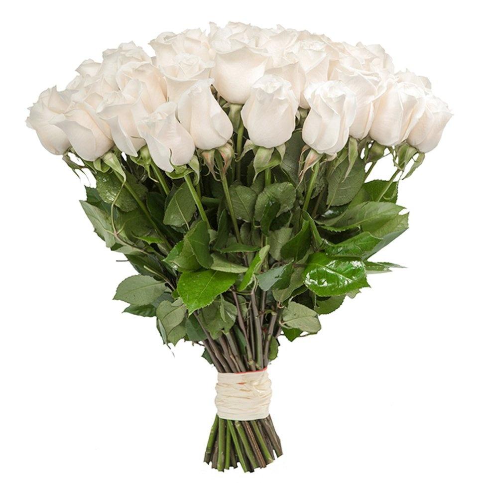 Цветы купить г москва