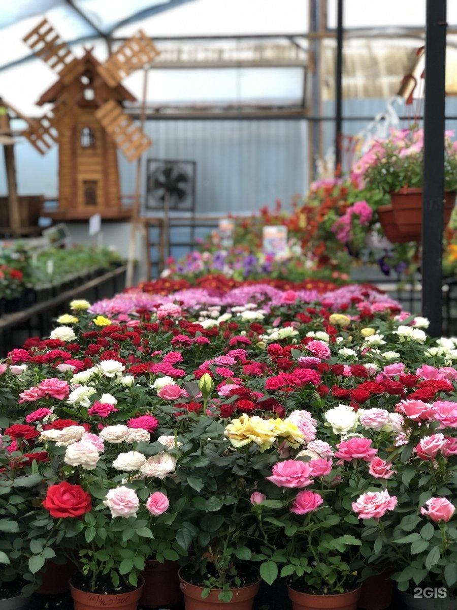Купить цветы в перми онлайн, букет цветов