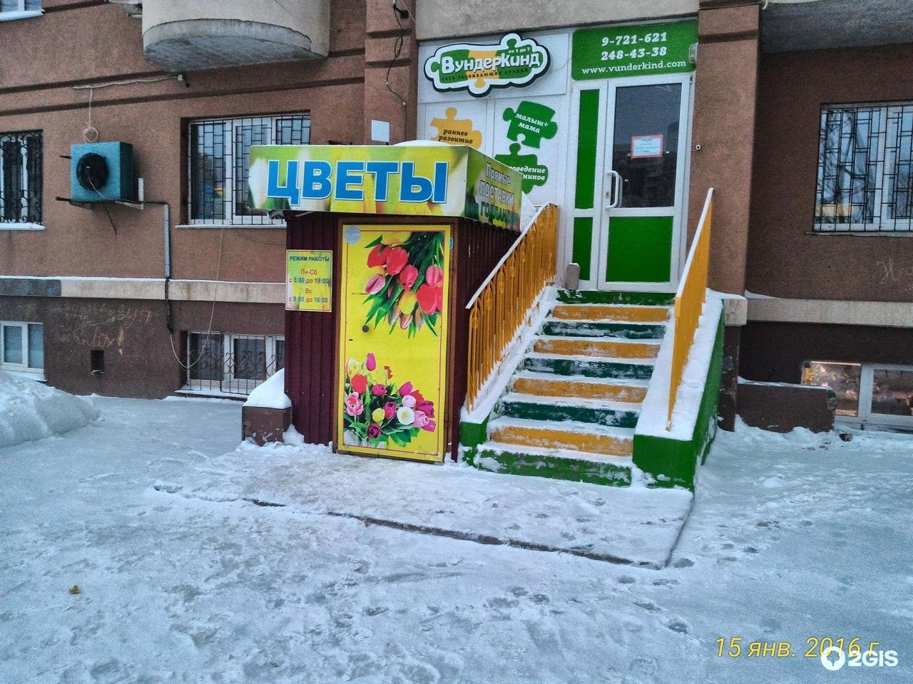 Новый, склад-магазин цветов азалия