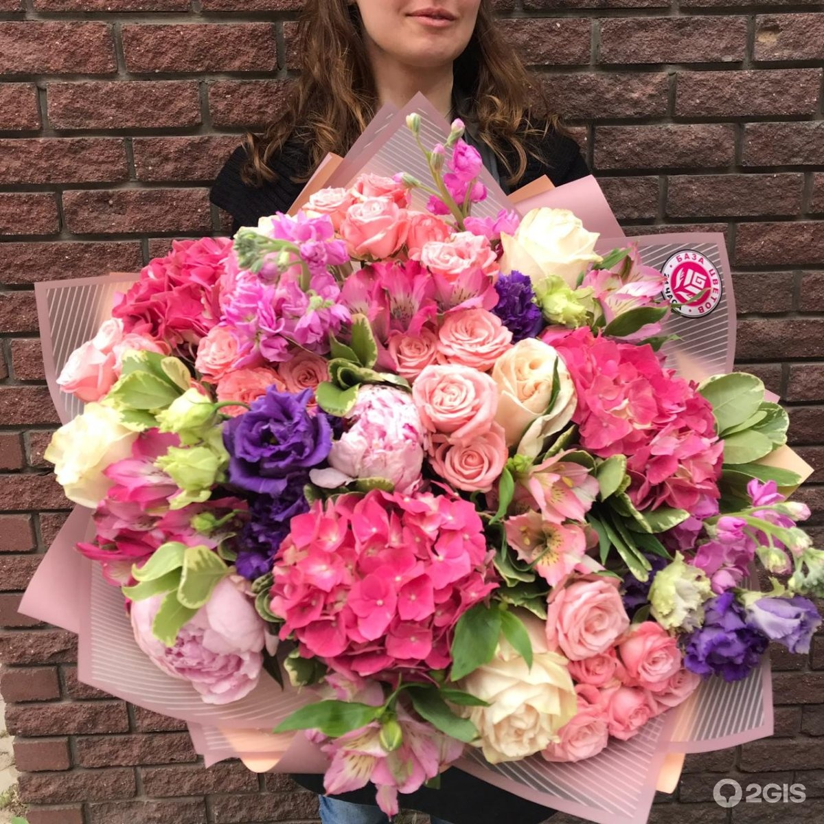 Цветов глоксиний, цветы опт нижний новгород
