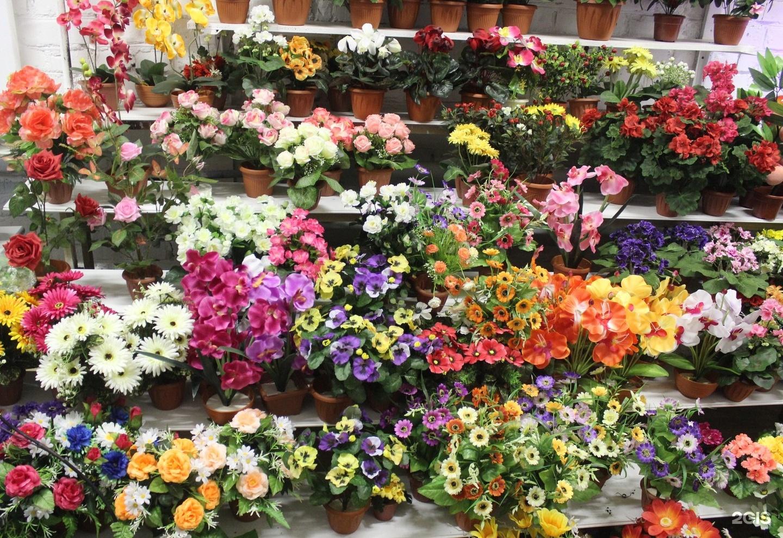 Цветы подарить, стоимость цветы оптом краснодар купить искусственные