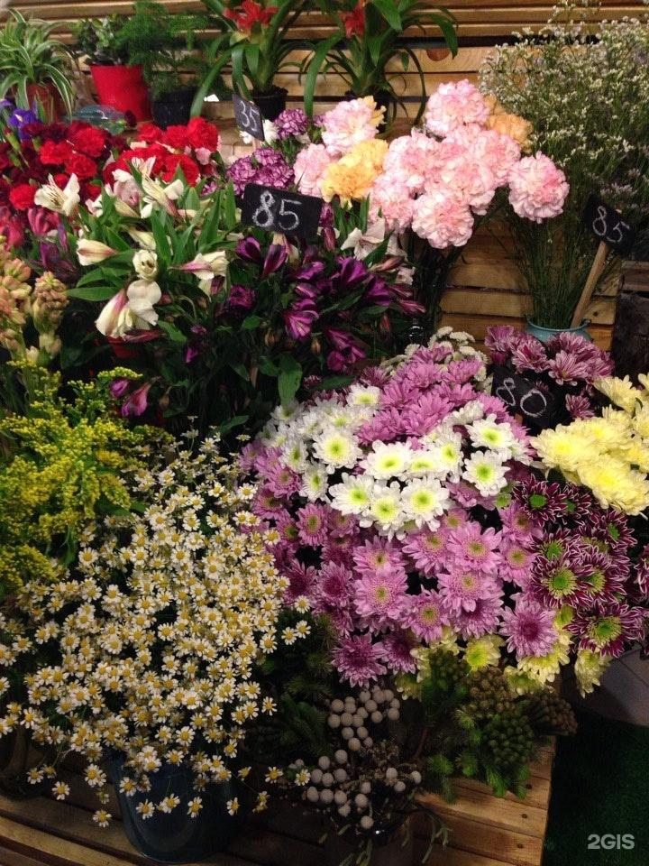 Сентября свит, магазин цветы в ярославль с доставкой