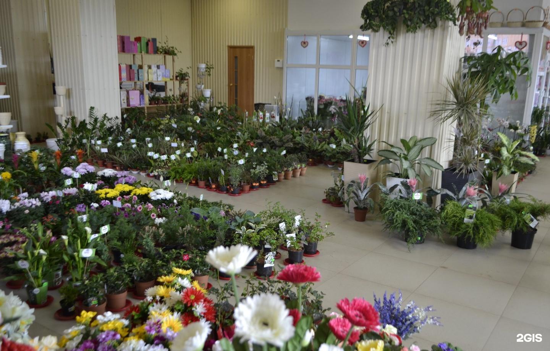 Час, купить цветы в ижевске сайт