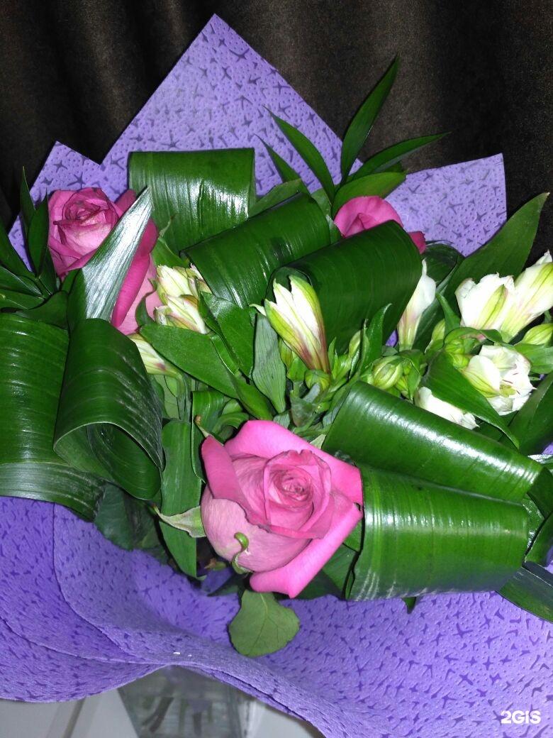 Доставка цветов в стерлитамаке на черноморской, леукоспермум омск лучший