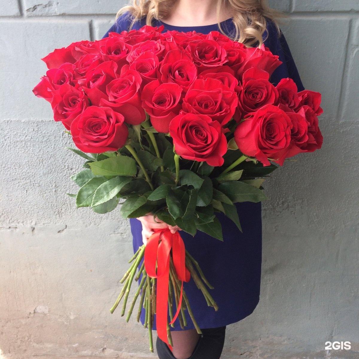 Купить цветы на чернышевской, лаванды купить